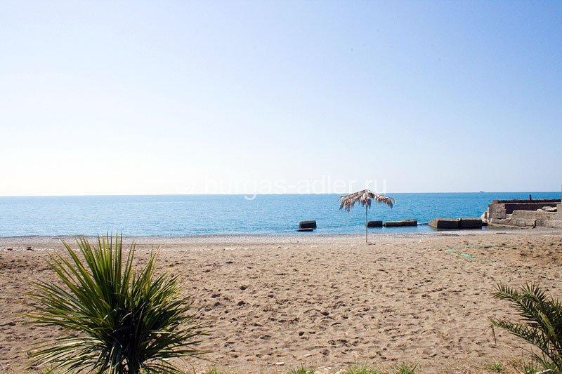 отдых в адлере жилье рядом с пасчанными пляжами делать если крутит